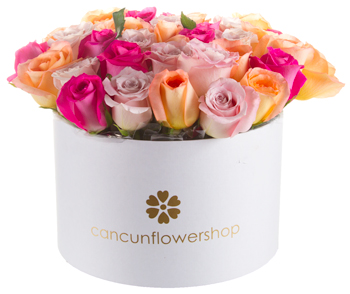 Assorted color roses in round box
